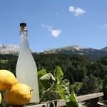 biere-du-vercors-la-limonade-du-vercors