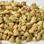Farine bio de graines de sarrasin germées déshydratées à – de 42°c – qualité cru – biologique
